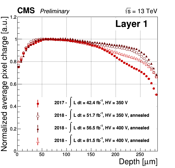 Radiation effects in the CMS phase 1 pixel detector