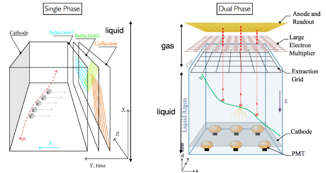 Single-phase and dual-phase liquid argon TPC readout