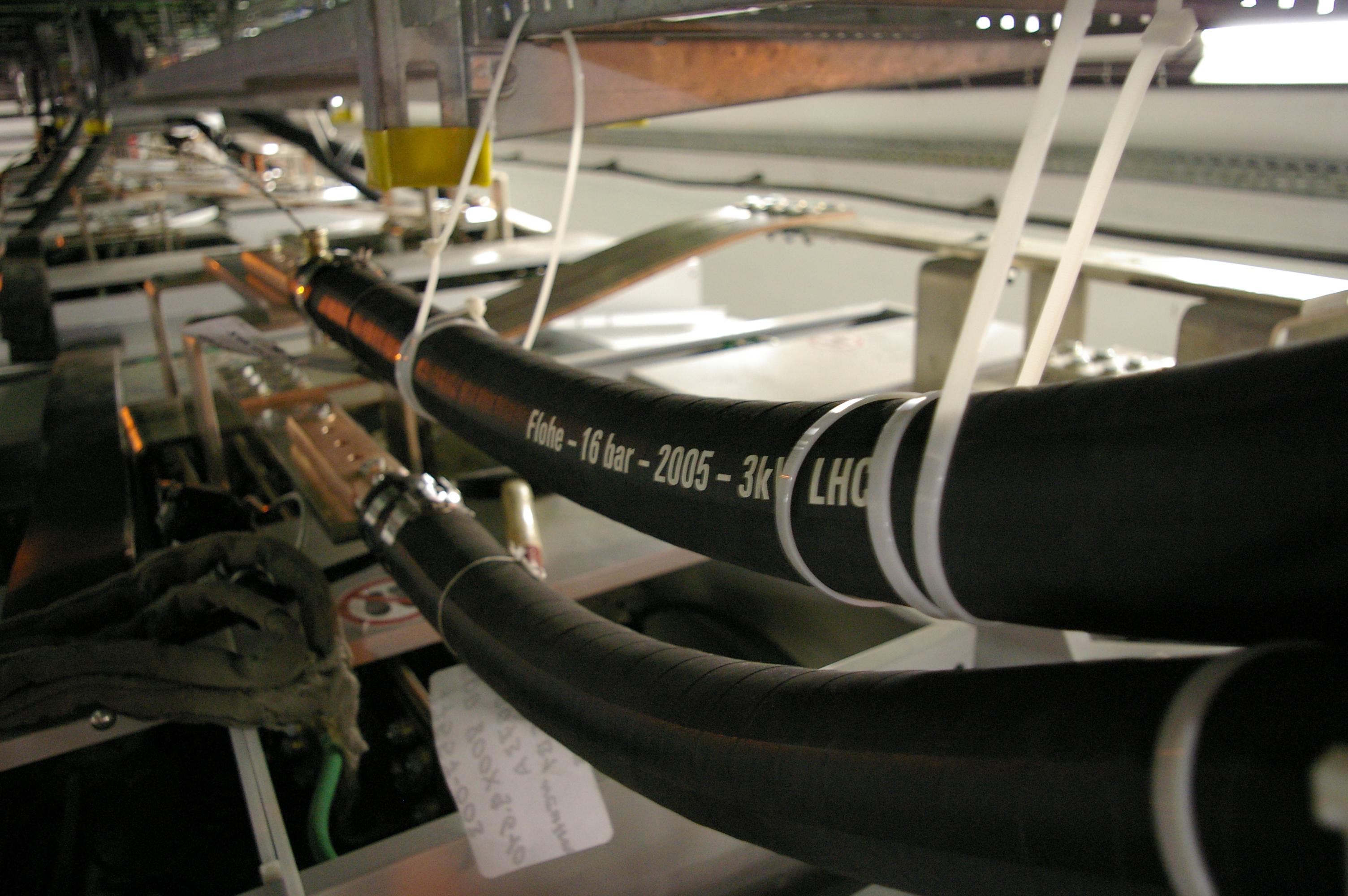 IMGP8938.JPG