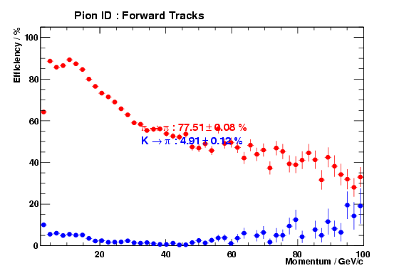 Rich pion PID performance versus momentum for forward tracks in DC04