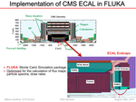 Implementation_of_CMS_ECAL_in_FLUKA.png